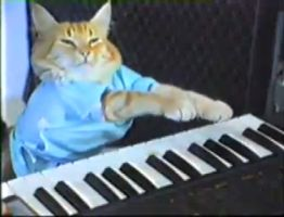 Keyboard_cat